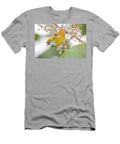 Bird With Berry Men's T-Shirt (Athletic Fit)