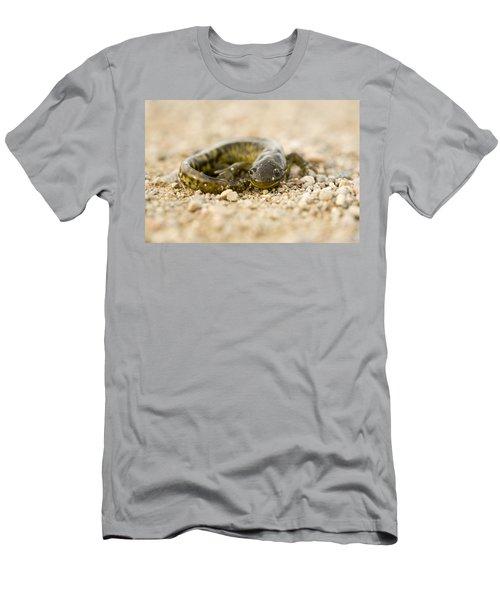 Close Up Tiger Salamander Men's T-Shirt (Athletic Fit)
