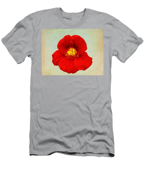 Daylily On Texture Men's T-Shirt (Athletic Fit)