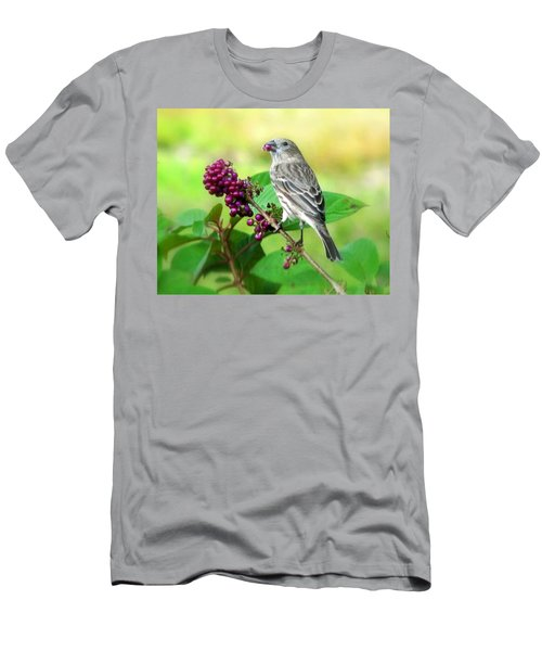 Finch Eating Beautyberry Men's T-Shirt (Athletic Fit)