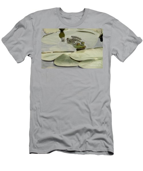 Frog On Lily Pads  Men's T-Shirt (Athletic Fit)