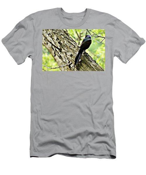 Grackle 1 Men's T-Shirt (Athletic Fit)