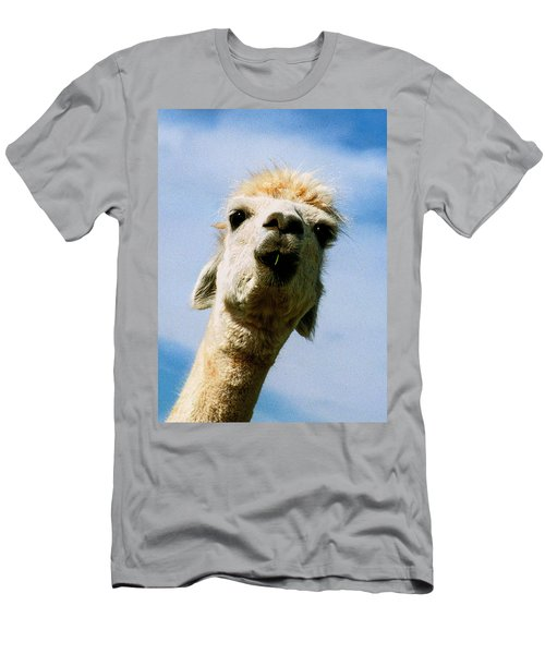 Llama Men's T-Shirt (Athletic Fit)