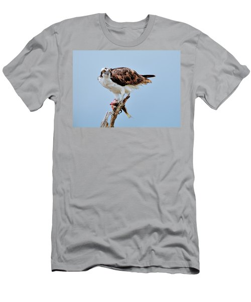 Osprey In The Morning Men's T-Shirt (Athletic Fit)