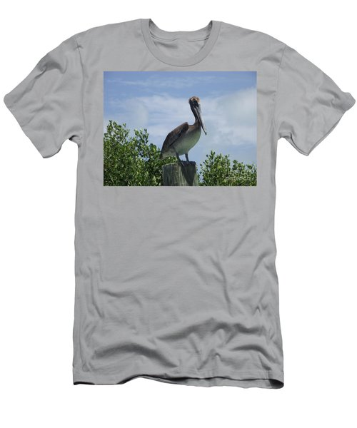 Perched Pelican Men's T-Shirt (Athletic Fit)