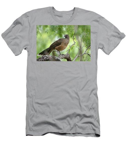 Plain Chachalaca  Men's T-Shirt (Athletic Fit)