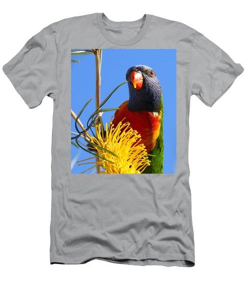 Rainbow Lorikeet Pose Men's T-Shirt (Athletic Fit)