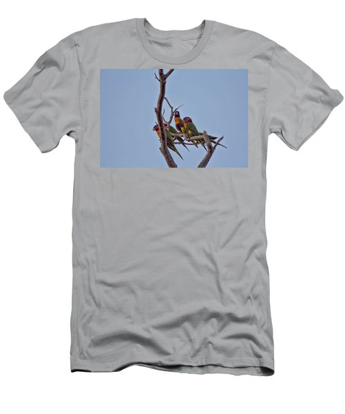 Rainbow Lorikeets Men's T-Shirt (Athletic Fit)
