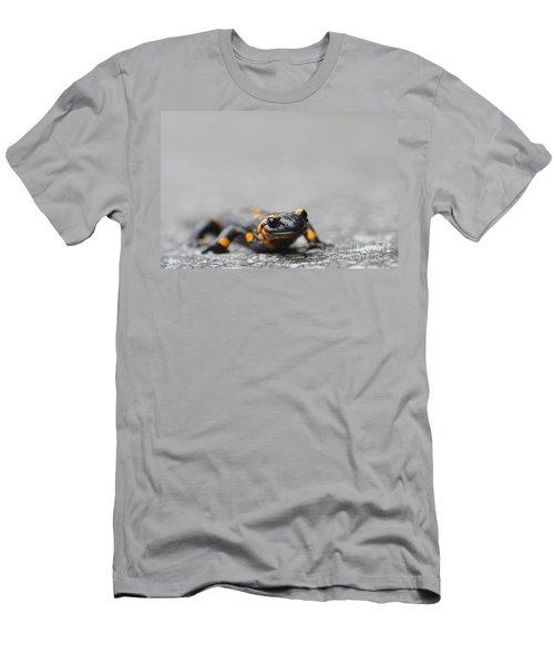 Salamander Men's T-Shirt (Athletic Fit)