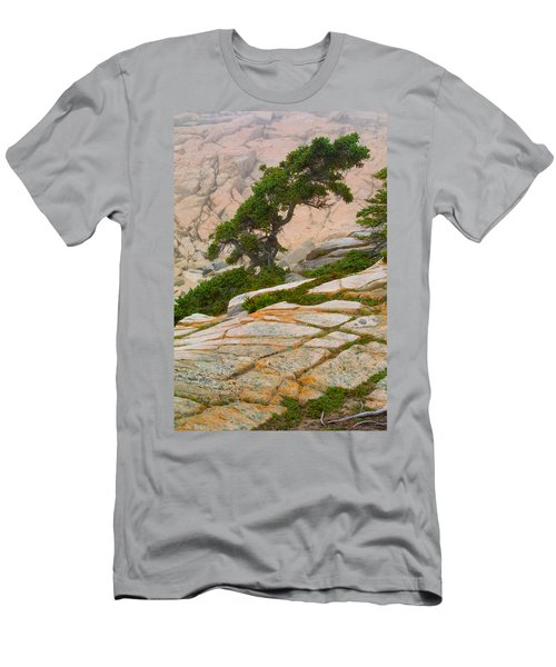 Schoodic Cliffs Men's T-Shirt (Slim Fit) by Brent L Ander