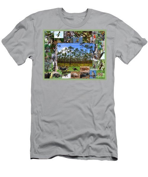 Southeastern Pine Forest Wildlife Poster Men's T-Shirt (Athletic Fit)