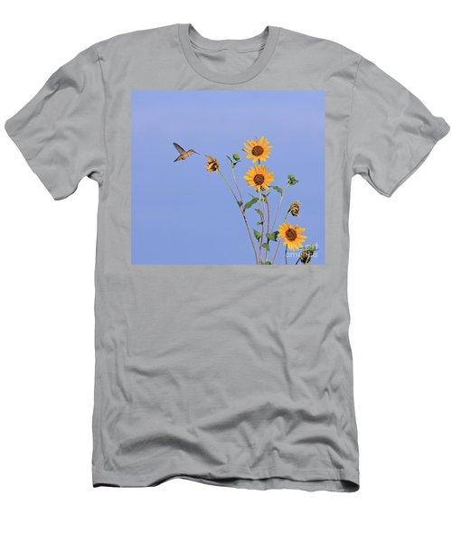 Summer Day Hummingbird Men's T-Shirt (Athletic Fit)