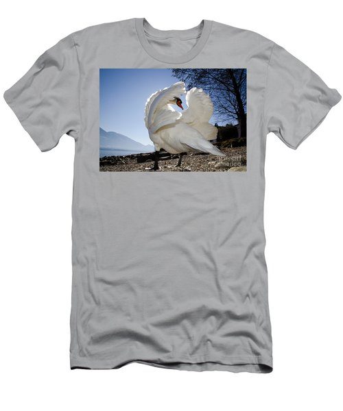 Swan In Backlight Men's T-Shirt (Athletic Fit)