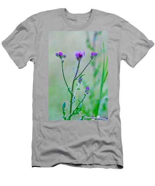 Thistledown Pastel Passion Men's T-Shirt (Athletic Fit)