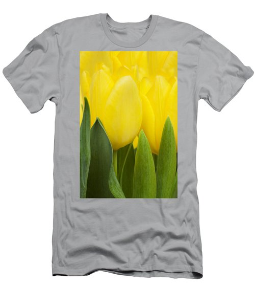 Spring Yellow Tulips Men's T-Shirt (Athletic Fit)