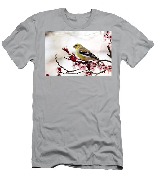 American Goldfinch In Spring Men's T-Shirt (Slim Fit) by Trina Ansel