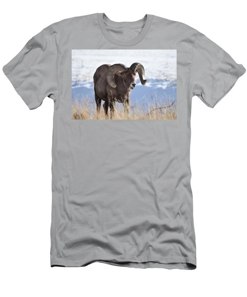 Men's T-Shirt (Athletic Fit) featuring the photograph Big Horn Sheep by Margarethe Binkley