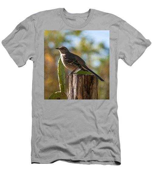 Bird On A Post Men's T-Shirt (Athletic Fit)