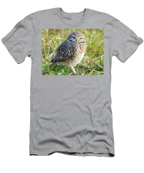 Cute Burrowing Owl Men's T-Shirt (Athletic Fit)