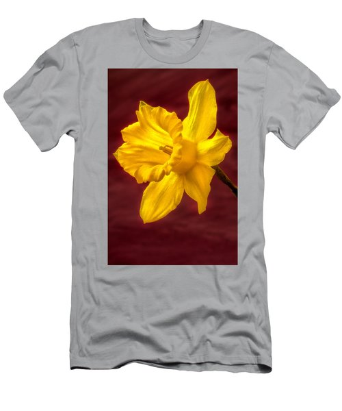 Daffodil Glow Men's T-Shirt (Athletic Fit)