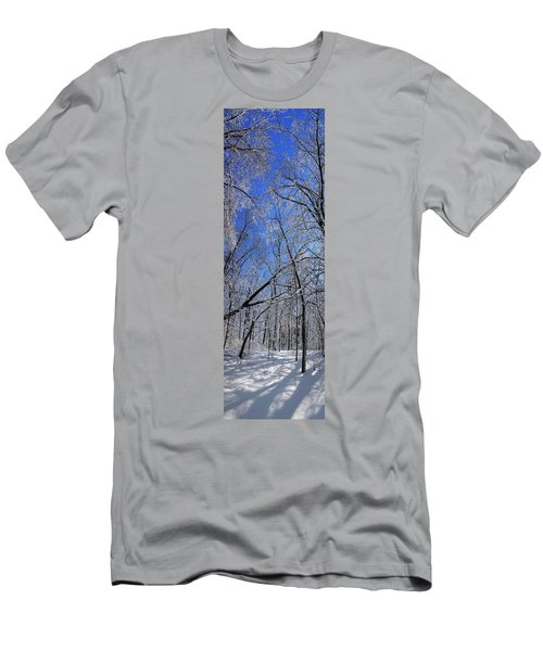 Glowing Forest, Knoch Knolls Park, Naperville Il Men's T-Shirt (Athletic Fit)