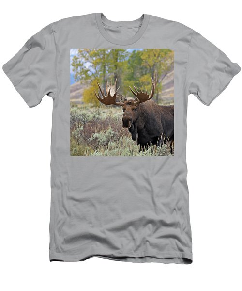 Handsome Bull Men's T-Shirt (Athletic Fit)