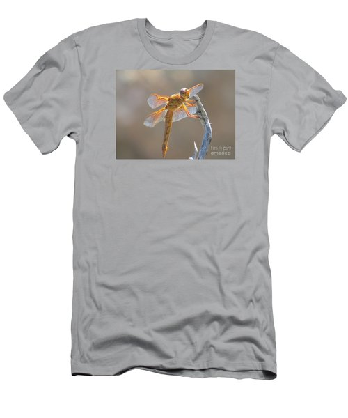 Dragonfly 5 Men's T-Shirt (Athletic Fit)