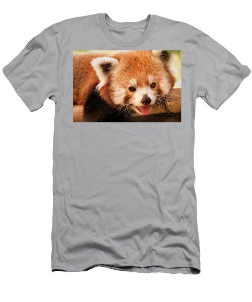 Red Panda Men's T-Shirt (Athletic Fit)