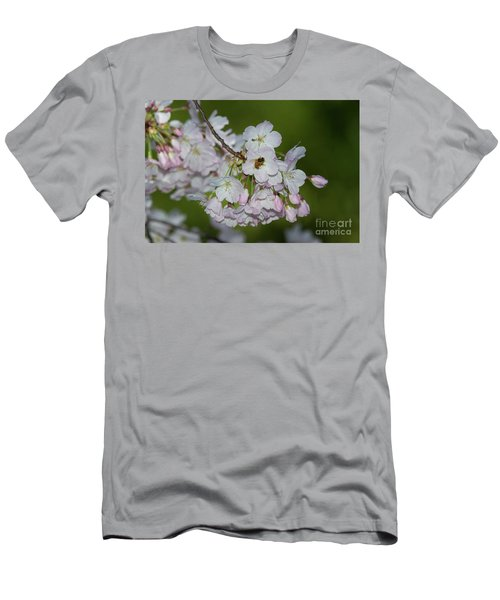 Silicon Valley Cherry Blossoms Men's T-Shirt (Slim Fit) by Glenn Franco Simmons