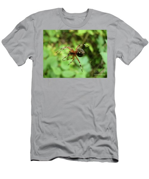 Spider  Men's T-Shirt (Athletic Fit)