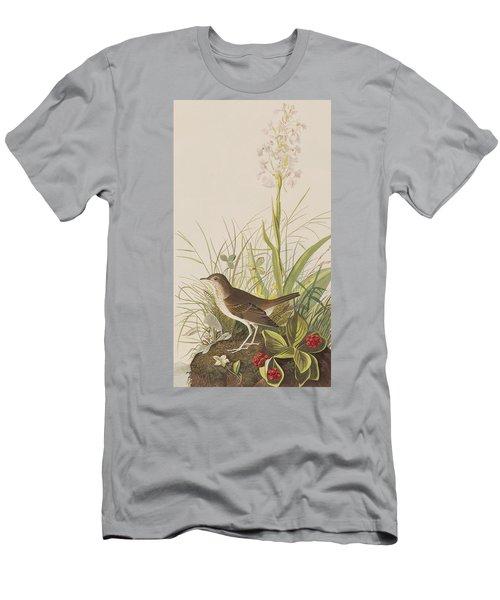 Tawny Thrush  Men's T-Shirt (Athletic Fit)