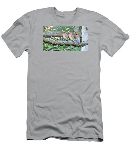 Men's T-Shirt (Slim Fit) featuring the photograph Three In A Row by Jeanette Oberholtzer