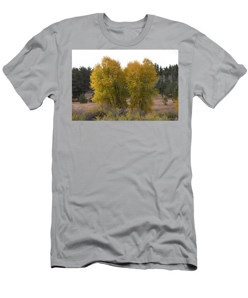 Aspen Trees In The Fall Co Men's T-Shirt (Athletic Fit)