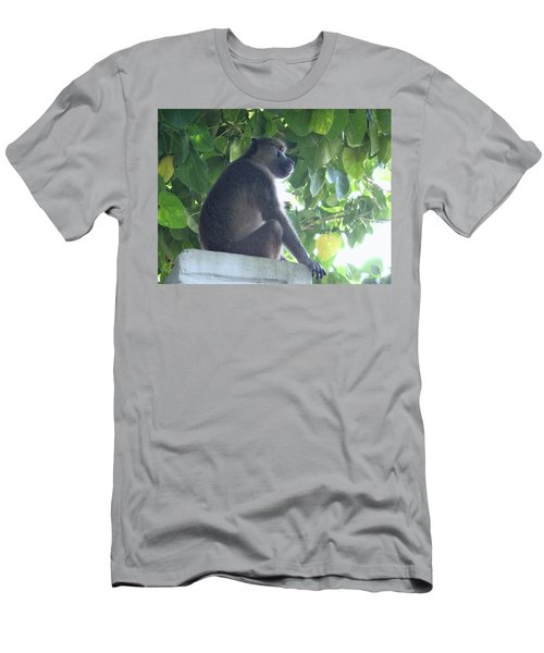 Baboon Sits Guard  Men's T-Shirt (Athletic Fit)