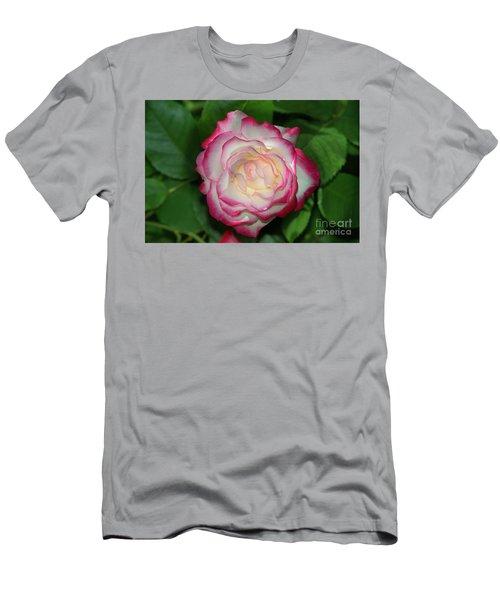 Cherry Parfait Rose Men's T-Shirt (Slim Fit) by Glenn Franco Simmons