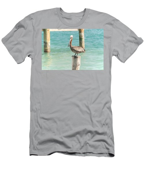 Pelican At Isla Mujeres Men's T-Shirt (Athletic Fit)