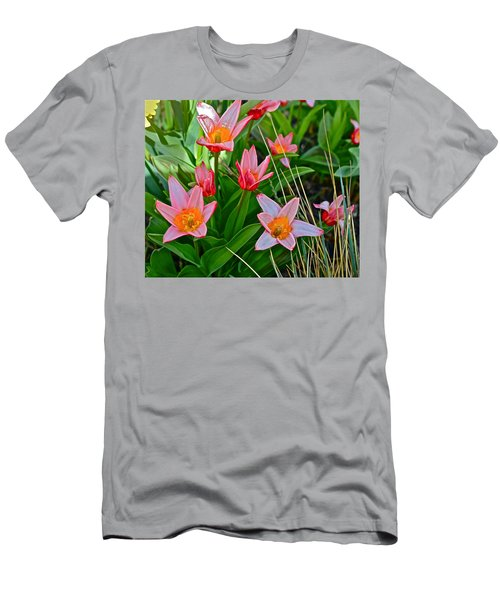 2016 Acewood Tulips 2 Men's T-Shirt (Athletic Fit)