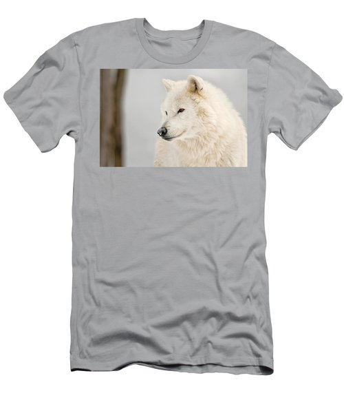 Arctic Wolf Portrait Men's T-Shirt (Athletic Fit)