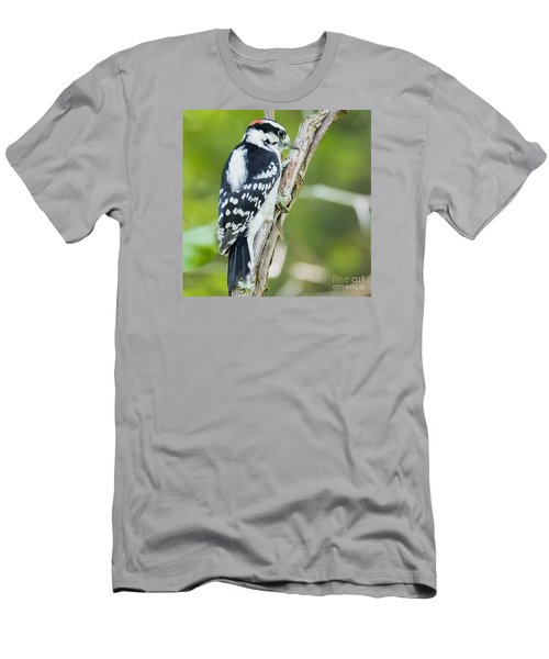 Downy Woodpecker  Men's T-Shirt (Slim Fit) by Ricky L Jones