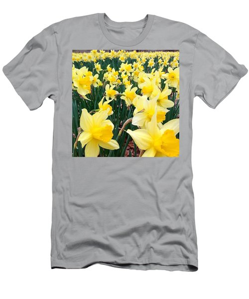 Angeline's Garden  Men's T-Shirt (Athletic Fit)