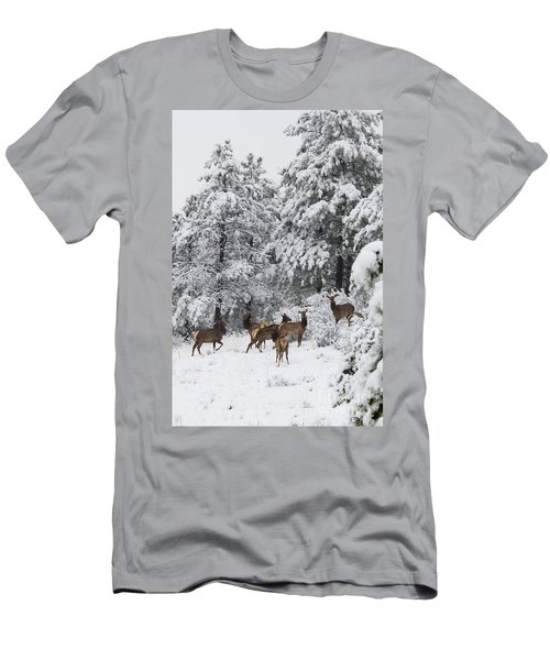 Elk In Deep Snow In The Pike National Forest Men's T-Shirt (Athletic Fit)