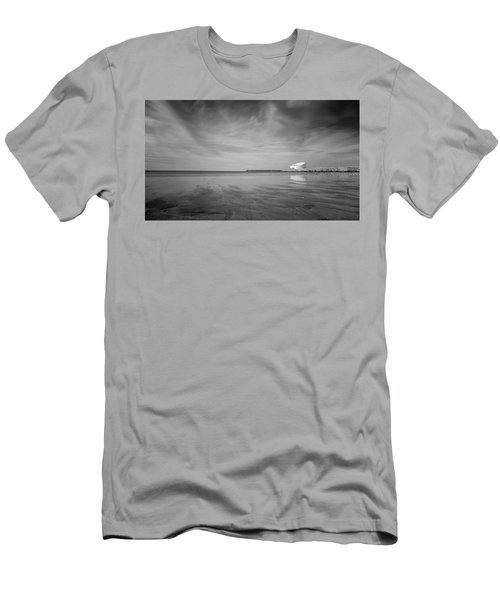 A Beach And A Bunch Of Birds Men's T-Shirt (Athletic Fit)