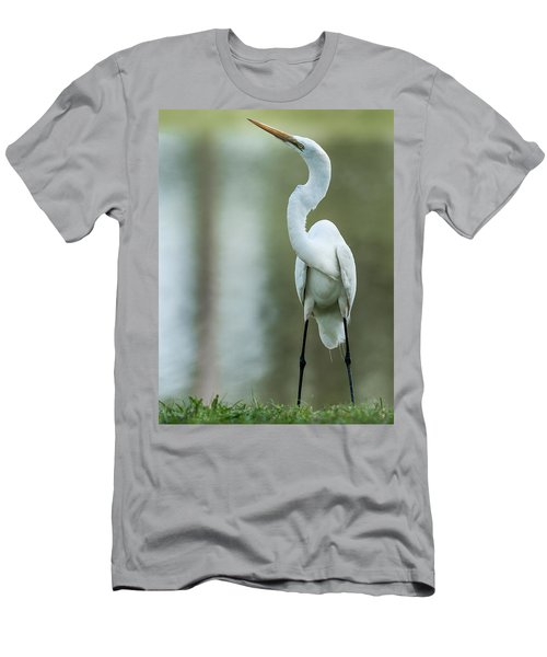 A Little Attitude Men's T-Shirt (Athletic Fit)