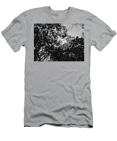 Abstract Leaves Sun Sky Men's T-Shirt (Athletic Fit)