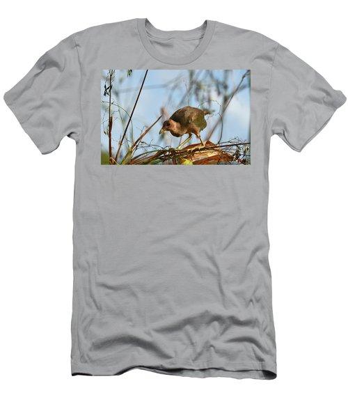 Adolescent Purple Gallinule Men's T-Shirt (Athletic Fit)