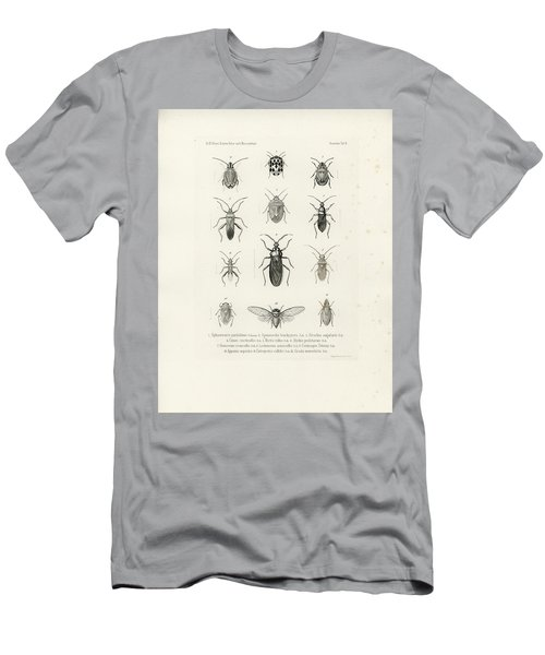 African Bugs And Insects Men's T-Shirt (Athletic Fit)
