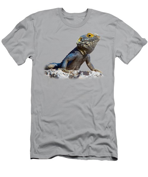 Agama Basking On A Rock T-shirt Men's T-Shirt (Athletic Fit)