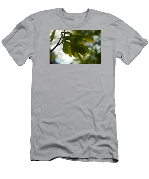 Air And Breeze Men's T-Shirt (Slim Fit) by Tina M Wenger
