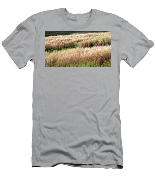 Amber Waves -  Men's T-Shirt (Athletic Fit)