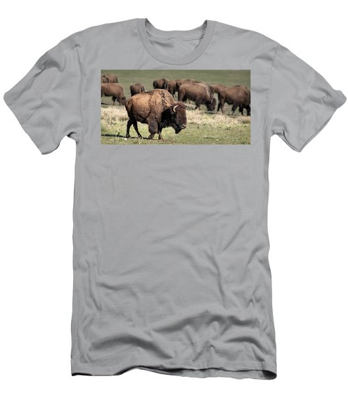 American Bison 5 Men's T-Shirt (Athletic Fit)